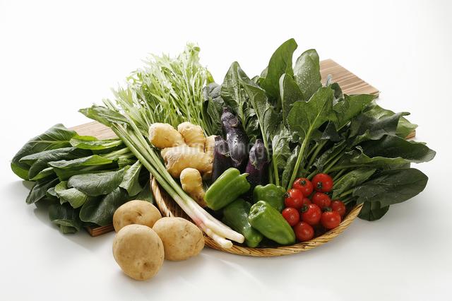 春夏の新鮮野菜の写真素材 [FYI04200752]