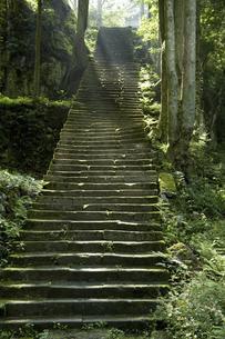 佐毘売山神社の石段の写真素材 [FYI04201353]
