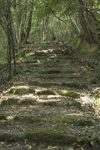 清水の石段の写真素材 [FYI04201358]