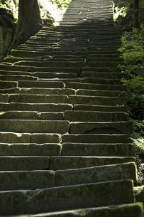 佐毘売山神社の石段の写真素材 [FYI04201378]