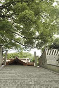 御袖天満宮の石段の写真素材 [FYI04201388]