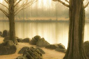 池のある風景の写真素材 [FYI04201851]