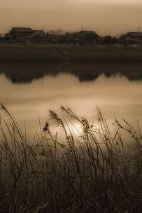 夕暮れの池の写真素材 [FYI04201859]