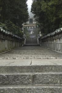 階段の写真素材 [FYI04202089]