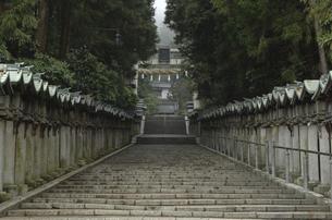 階段の写真素材 [FYI04202091]
