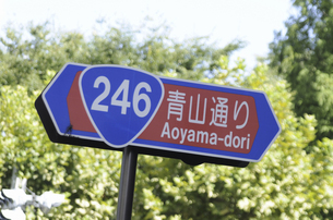 道路標識の写真素材 [FYI04202265]