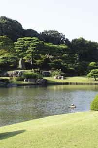 六義園の池の写真素材 [FYI04202612]
