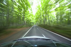 新緑の中を走るハイブリッドカーの写真素材 [FYI04203001]
