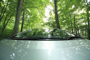 新緑の中を走るハイブリッドカーの写真素材 [FYI04203014]