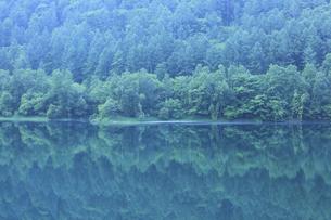 新緑の湖の写真素材 [FYI04203160]