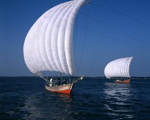 帆引き船の写真素材 [FYI04203333]
