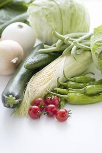野菜数種の写真素材 [FYI04203937]