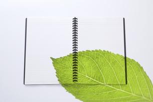 ノートにのせた緑の葉の写真素材 [FYI04205293]