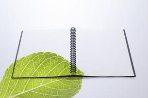 ノートにのせた緑の葉の写真素材 [FYI04205295]