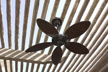 屋外の日除けの天井扇風機の写真素材 [FYI04205491]