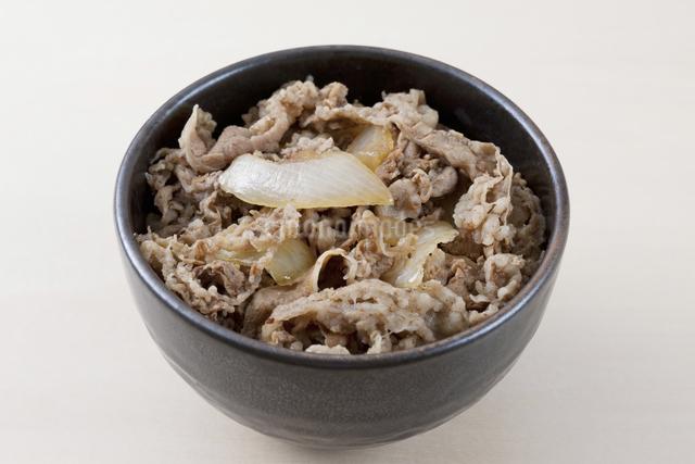 牛丼の写真素材 [FYI04207833]