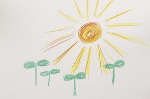 双葉と太陽の絵のイラスト素材 [FYI04210231]