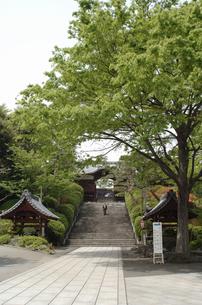 護国寺の不老門の写真素材 [FYI04214778]