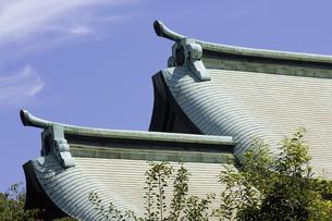 神社の屋根の写真素材 [FYI04218486]