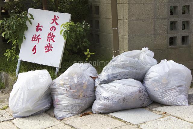街角に出されたゴミ袋の写真素材 [FYI04219510]