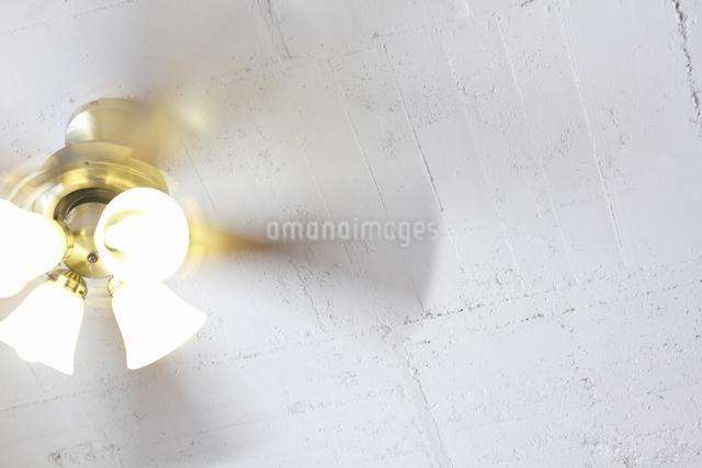 回転する室内の天井扇風機の写真素材 [FYI04220759]