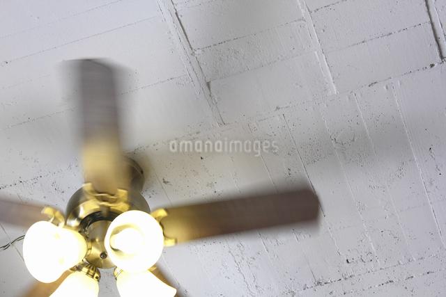 回転する室内の天井扇風機の写真素材 [FYI04220761]