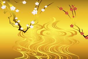梅の花のイラスト素材 [FYI04221290]
