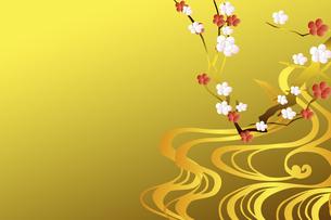 梅の花のイラスト素材 [FYI04221296]