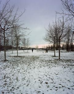 Landschaft mit Parkの写真素材 [FYI04221375]