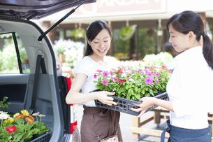 花屋の店員の女性の写真素材 [FYI04221595]