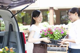 花屋の店員の女性の写真素材 [FYI04221596]