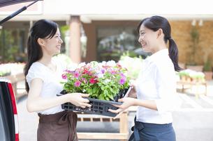 花屋の店員の女性の写真素材 [FYI04221597]