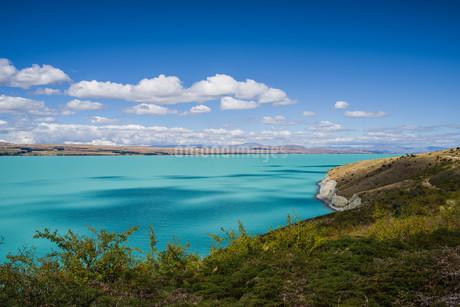 プカキ湖_ニュージーランドの写真素材 [FYI04223270]