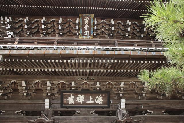 智恩寺の山門の写真素材 [FYI04223765]