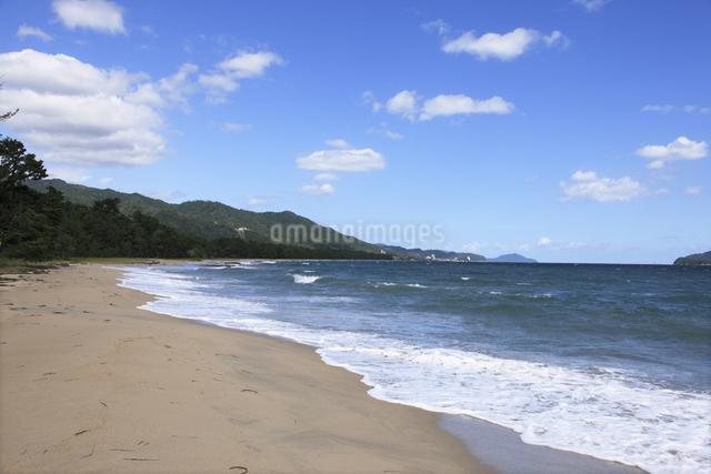 天橋立の砂浜の写真素材 [FYI04223793]