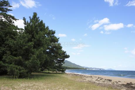 天橋立の砂浜の写真素材 [FYI04223795]