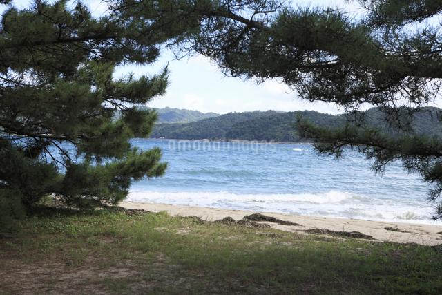 天橋立の砂浜の写真素材 [FYI04223817]