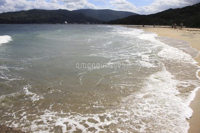 天橋立の砂浜の写真素材 [FYI04223824]