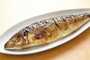 焼き魚アジの写真素材 [FYI04225234]