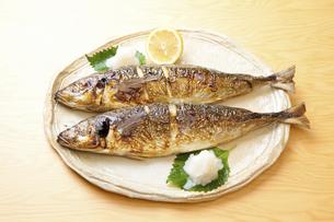 焼き魚アジの写真素材 [FYI04225238]