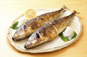 焼き魚アジの写真素材 [FYI04225239]