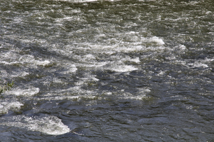 初秋の盛岡・北上川の流れ 早瀬の写真素材 [FYI04227294]