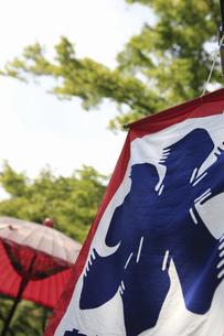 日本庭園の蛇の目傘とかき氷の旗のイラスト素材 [FYI04228830]