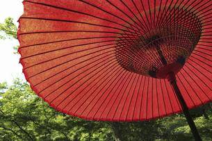日本庭園の赤い蛇の目傘のイラスト素材 [FYI04228832]