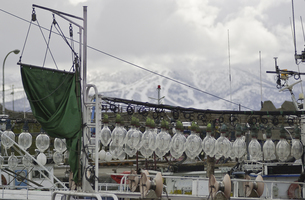 いか釣り船の写真素材 [FYI04229772]