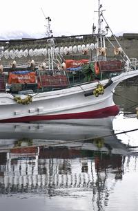 いか釣り船の写真素材 [FYI04229774]