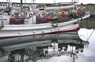 いか釣り船の写真素材 [FYI04229777]