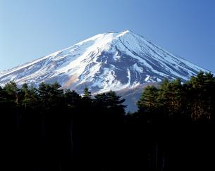 冬の富士山の写真素材 [FYI04229933]