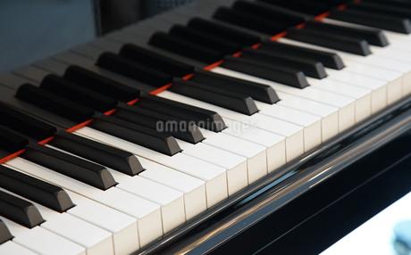 ピアノの鍵盤の写真素材 [FYI04231874]