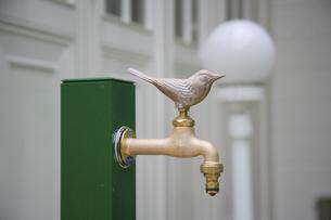 鳥の水栓の写真素材 [FYI04231932]